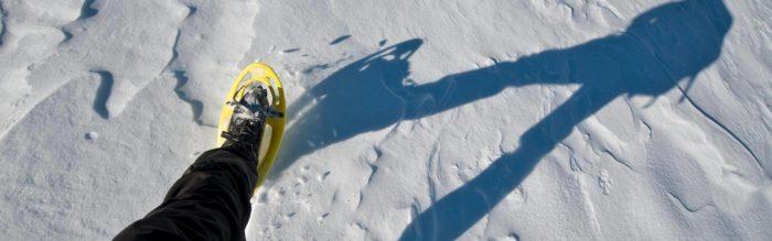 Ciaspolare sulla neve è un ottimo modo per stare a contatto con la natura durante i mesi invernali