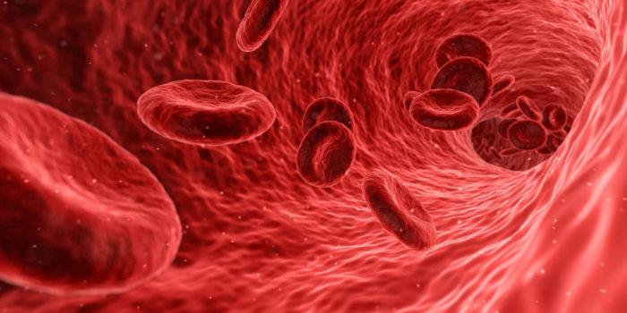Colesterolo alto nel sangue: cosa mangiare