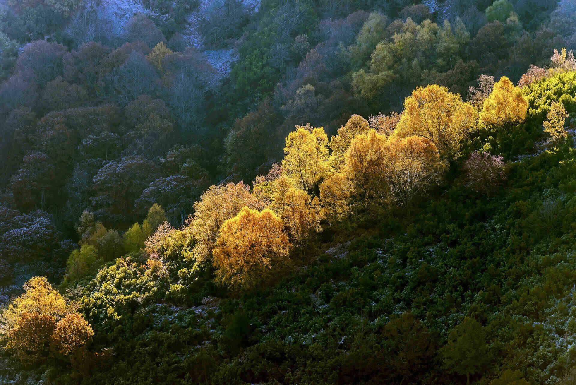 Passeggiata autunnale in Valtellina intorno a Teglio