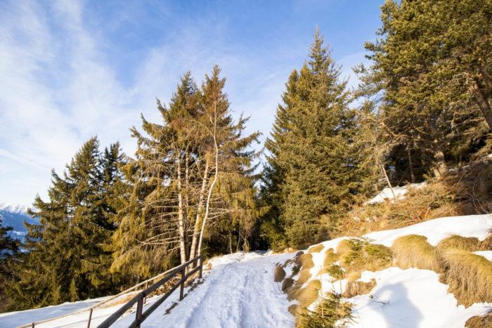 ciaspolata in Valtellina a Prato Valentino sopra Teglio