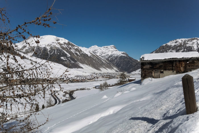 ciaspolata a Livigno in inverno, Valtellina