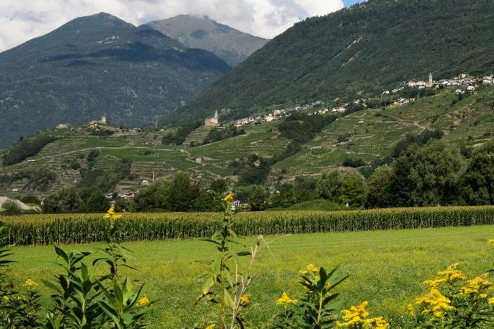 Escursione in Valtellina vicino a Sondrio