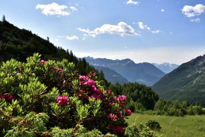 percorso per il rifugio Longoni da Chiareggio in Valmalenco - escursioni in Valtellina